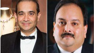 पीएनबी घोटाला: नीरव मोदी और मेहुल चोकसी के खिलाफ गैरजमानती वारंट जारी