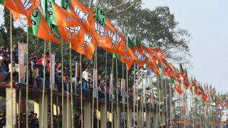 झारखंड निकाय चुनावों में बीजेपी का बजा डंका, 34 में से 21 निकायों में मिली जीत