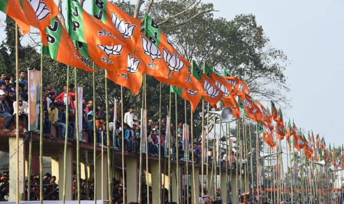BJP sweeps mayor, deputy mayor posts in Jharkhand