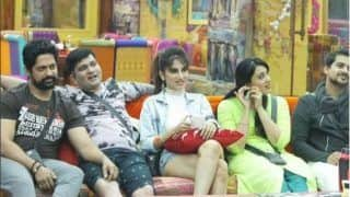 Bigg Boss Marathi Season 1: Fans Want These Two Contestants To Hook Up Inside the House