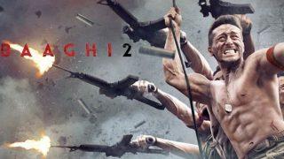 Baaghi 2: बॉक्स ऑफिस पर 'टाइगर' ने लगाई छलांग, कहा- 'हीरो' मैं नहीं, कोई और है