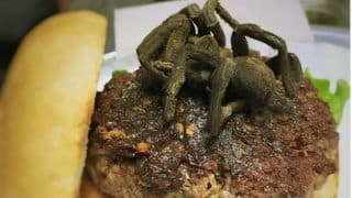 Tarantula Burgers: US Restaurant Offers Burger Garnished with Grilled Spiders