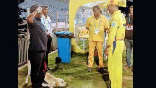 हैदराबाद को हराने के बाद महेन्द्र सिंह धोनी को मिला 'क्यूट सैल्यूट'