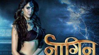 Karishma Tanna: Getting A Call From Balaji For Naagin 3 Was Like A Dream Come True
