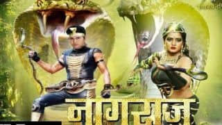 Nagraj Trailer Out : Anjana Singh's Performance And Yash Kumar's Action Moves Will Appeal To The Bhojpuri Masses