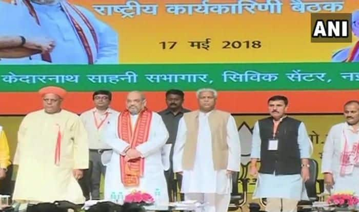 Amit Shah Tells BJP Workers at Working Committee Meet to Gear up For Not Just 2019, But For The Next 50 Years