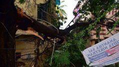 बिहार: पटना में आंधी-बारिश ने घरों को भी किया क्षतिग्रस्त, पेड़ गिरे, लोगों ने रैनबसेरा में गुजारी रात