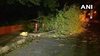 यूपी में आंधी-तूफान ने मचाई तबाही, 38 लोगों की मौत, पचास से अधिक घायल