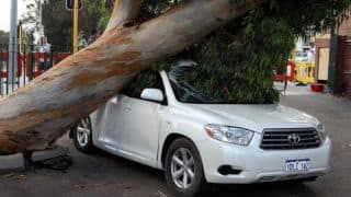 Tree Fallen on Car? Does Insurance Pay For Vehicles Damaged by Thunderstorms And Dust Storms? How to Claim Car Insurance?