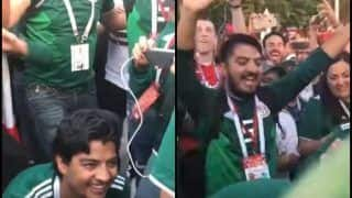 FIFA World Cup: WATCH Mexican Fan Proposing Publicly to Girlfriend For Marriage After Team's Historic Win Over Germany