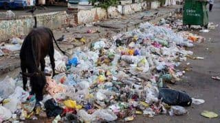 World Environment Day 2018: Delhi Tops Nation's Chart in Generating Plastic Waste as EU Pledges For 'Beat Plastic Pollution'