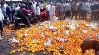 Farmers' Protest: Vegetables, Milk Supply to be Affected, Prices Likely to Soar After Country-Wide Stir