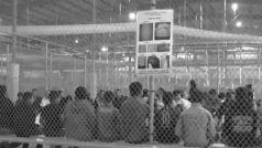 भारतीयों को सुरक्षा के खतरे के नजरिए से देखता है अमेरिका, 10 हजार लोगों को हिरासत में लिया गया