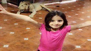 शाहिद अफरीदी ने शेयर की बेटी की तस्वीर लेकिन पीछे बैठा था शेर, फैंस ने पूछा- क्या ये असली है?