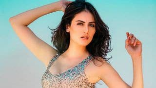 Ex Big Boss Contestant Mandana Karimi Goes Bold, Poses Topless on Beach; View Picture