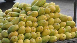 Vegetables and Fruits Export Hub: सब्जियों और फलों के निर्यात का हब बनेंगे वाराणसी और अमरोहा