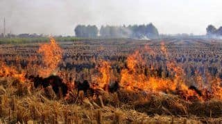 Crop Residue Burning in Punjab Affecting Other Parts of India: Study