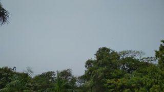 दिल्ली-NCR में 'शाम को आंधी के साथ बारिश, अभी भी धूल से हवा जहरीली
