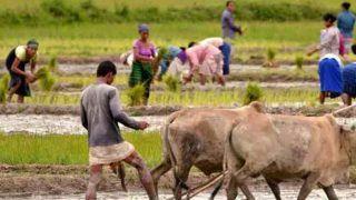 किसानों के लिए खुशखबरी, मोदी सरकार ले सकती है ये बड़ा फैसला