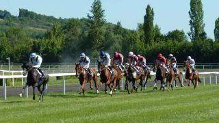भारत में लीगल है घोड़ों की रेस पर सट्टेबाजी, इस तरह होता है पूरा खेल