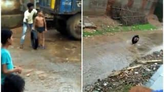 Boy Enjoying The Rain Inside a Tyre Will Remind You of Your Childhood Days, Watch Viral Video