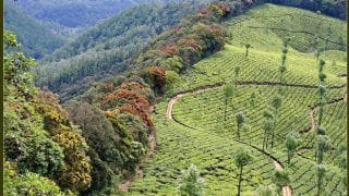 Valparai: A quaint hill station in Tamil Nadu you must explore