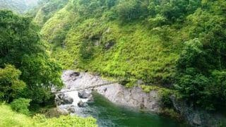 How to Visit Silent Valley National Park in Palakkad, Kerala by Road, Train and Flight