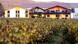 Sula Fest 2018: 7 Airbnb Homes in Nashik to Make Your Vino Getaway Glorious