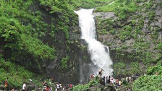 11 highest waterfalls to visit in the monsoon in Maharashtra