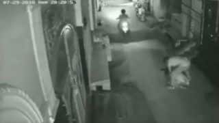 Caught on Cam: Man Attacks Woman From Behind, Snatches Chain, Mobile Phone in Delhi's Mansarovar Area