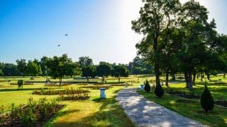 Top 10 Cities in India With Lush Greenery For a Refreshing Holiday