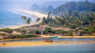 Here is another reason to hit the beaches of Goa: a dental holiday