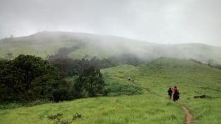 6 Incredible Forest Trails in India That Are Perfect for a Monsoon Trek
