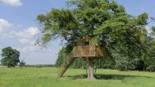 Want to Stay in a Tree House? Then Check Out These 10 Resorts in India