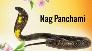 Nag Panchami 2018 Wishes: Best Messages, Quotes, Happy Nag Panchami WhatsApp GIF & Greetings to Celebrate Sawan Month Festival