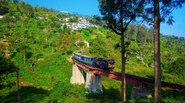 Everything you should know about Nilgiri Mountain Railway