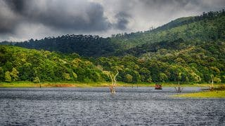 Periyar National Park in Kerala: Breathtaking Photos of This Popular Tiger Reserve Will Leave You in Awe
