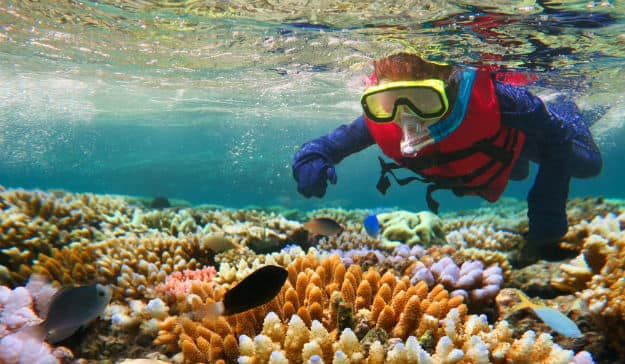 Australia Pledges Over 500 Million Dollars to Help Save The Great Barrier Reef