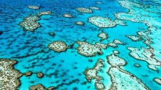 Australia is Offering Cash for Innovative Ideas to Save the Great Barrier Reef