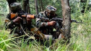 Indian Army Deserter Among Two Hizbul Militants Killed in Shopian Encounter