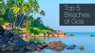 Love The Beach? Check Out The Top 5 in Goa That You Can Visit