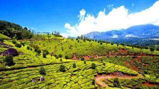 5 Reasons to Visit Munnar in April