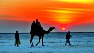 Planning a Trip to Rann of Kutch? Here's When Tent City is Opening For Tourists in Diwali Time