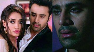 Naagin 3 Spoiler Alert: Bela Kills Mahir After Her Ex-Boyfriend Vikrant Returns; Check Out Latest Episode Update