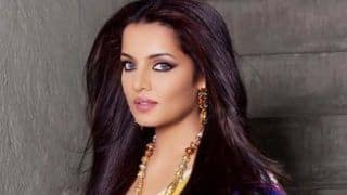 I Was Ostracised by Colleagues And Friends For Supporting LGBT Community: Celina Jaitly