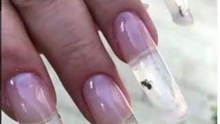 Russia Salon Apply Live Ants in Manicure as a New Nail Art Technique; Video Goes Viral - Watch