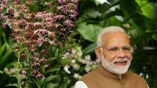 Happy Birthday Prime Minister: Anupam Kher, Kangana Ranaut, Akshay Kumar Wish Narendra Modi as he Turns 68