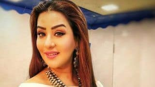 Bigg Boss 12: Shilpa Shinde Trolled For Supporting Sreesanth on Washing Utensils - Check Tweets