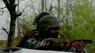 Jammu And Kashmir: Three Militants Killed in Bandipora Forest Operation