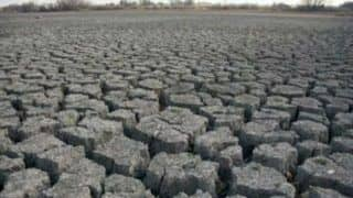 Karnataka: Rain-deficit 23 Districts Declared Drought-hit